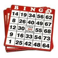 Cardboard Bingo Card - Red