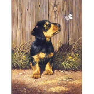 """Dachshund Puppy - Junior Small Paint By Number Kit 8.75""""X11.75"""""""