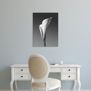 Easy Art Prints PhotoINC Studio's 'Calla No. 4' Premium Canvas Art