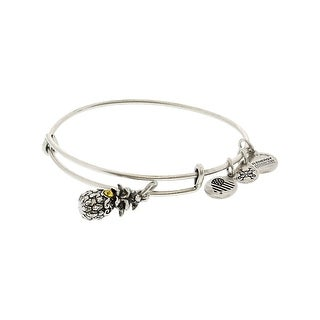 "Alex And Ani Women's Path Of Symbols Bangle Bracelet - 9"" - Silver"