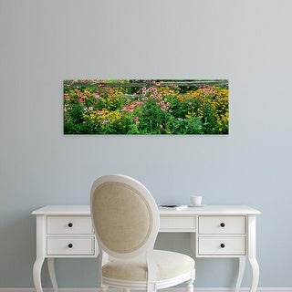 Easy Art Prints Panoramic Images's 'Flowers in a garden' Premium Canvas Art