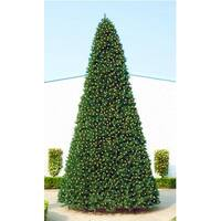 18' Giant Pre-Lit Everest Fir Commercial Christmas Tree - Warm White LED Lights - green