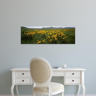 Easy Art Prints Panoramic Image 'Poppies in a field, Carrizo Plain, San Luis Obispo County, California' Canvas Art