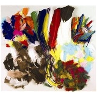 Art Supplies P4505 3 Oz. Feathers Duck, Quill Multi-Color