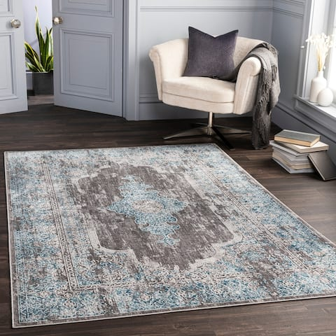 Graene Distressed Traditional Area Rug
