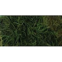 Apple Green - Preserved Spanish Moss 108.5 Cubic Inches