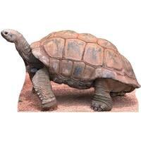 Advanced Graphics 58 Tortoise Life Size Cardboard Standup