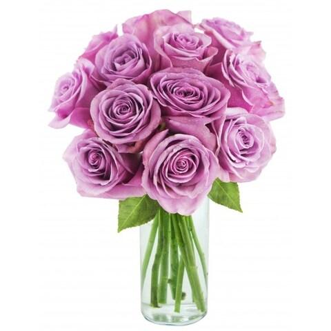 KaBloom: Bouquet of 12 Fresh Cut Purple Roses (Farm-Fresh, Long-Stem) with Vase