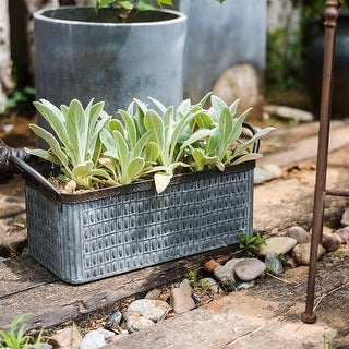 RusticReach Rectangular Iron Planter with Handles