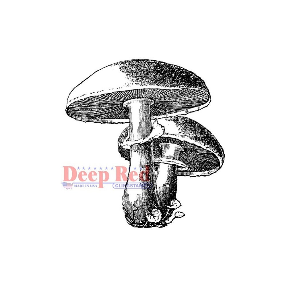 Deep Red Cling Stamp 2X2-Mushrooms
