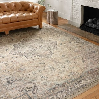 Alexander Home Venetian Printed Star Persian Distressed Rug