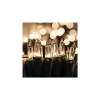 "Wintergreen Lighting 15189 17' Long Indoor Standard 50 Mini Light Holiday Light Strand with 4"" Spacing and Green Wire"