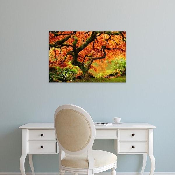 Easy Art Prints Michel Hersen's 'Japanese Maple In Full Fall Color' Premium Canvas Art
