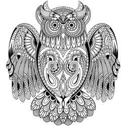 """Owl - Kaisercolour Coloring Poster 27""""X19"""" (10/Pack)"""