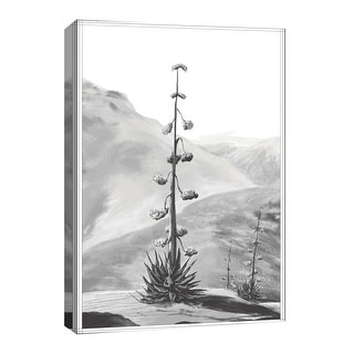 "PTM Images 9-126723  PTM Canvas Collection 8"" x 10"" - ""Shadow Tree"" Giclee Mountains Art Print on Canvas"