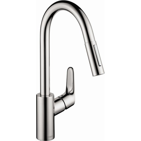 Shop Hansgrohe 04505 Focus Pull-Down Kitchen Faucet with ...