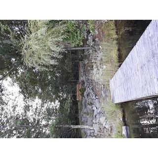 "SAFAVIEH Outdoor Living Karoo Natural Acacia Wood Bench - 70.1"" x 24.4"" x 34.3"""