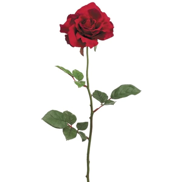 Shop Club Pack of 24 Artificial Large Single Red Rose Silk