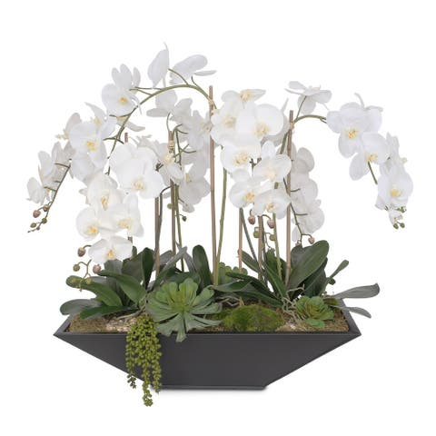 Real Touch White Silk Phalaenopsis Orchids with Succulents in Planter - 34W x 22D x 30H