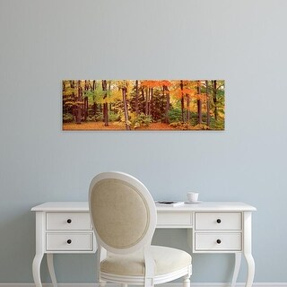 Easy Art Prints Panoramic Images's 'Autumn trees in a forest, Chestnut Ridge Park, New York, USA' Premium Canvas Art