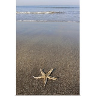"""Starfish on the beach"" Poster Print"