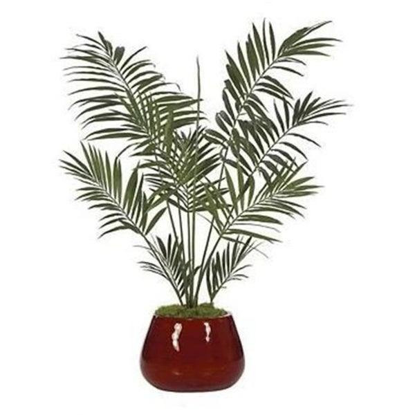 Autograph Foliages P-2420 - 6.5 Foot Kentia Palm Tree - Green