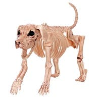 Crazy Bones W80372 Halloween Skeleton Dog, 10.75""
