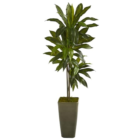 4.5' Dracaena Artificial Plant in Green Planter (Real Touch)