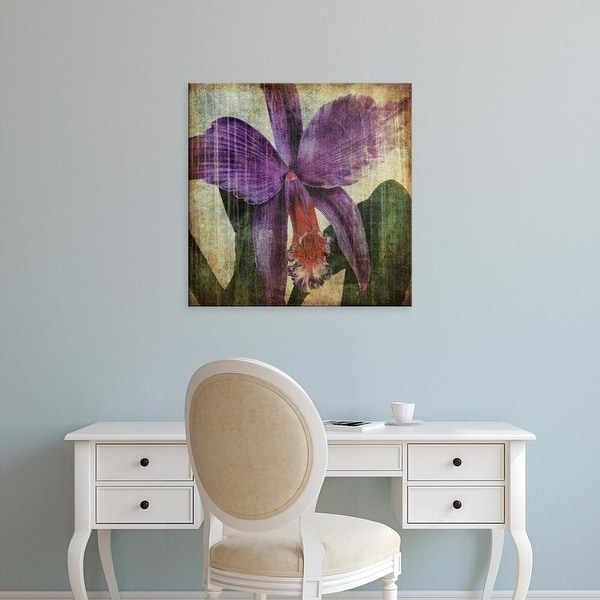 Easy Art Prints John Butler's 'Pacific Orchid II' Premium Canvas Art