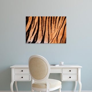 Easy Art Prints Adam Jones's 'Bengal Tiger' Premium Canvas Art