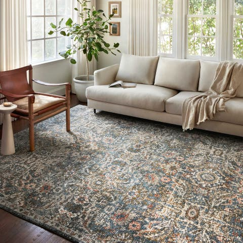 Alexander Home Valeria Distressed Boho Area Rug