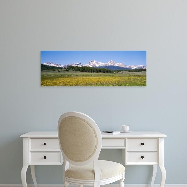 Easy Art Prints Panoramic Image 'Flowers, Mountains, Sawtooth National Recreation Area, Stanley, Idaho' Canvas Art