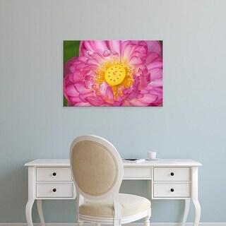 Easy Art Prints Joanne Wells's 'Lotus Bloom In The Summer' Premium Canvas Art