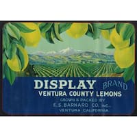 Display Lemon - Vintage Label (100% Cotton Towel Absorbent)