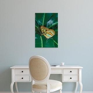 Easy Art Prints Adam Jones's 'Malachite Butterfly' Premium Canvas Art