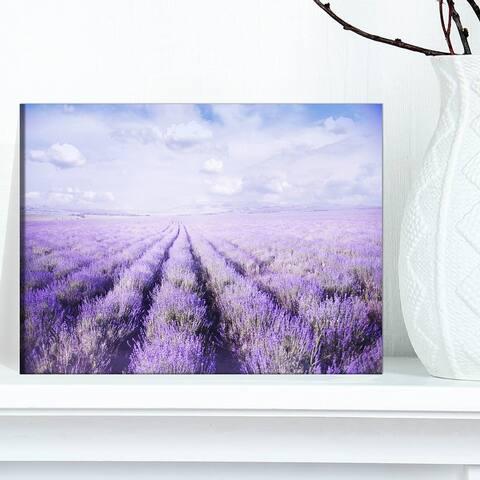 Designart 'Fields of Lavender Against Blue Sky' Landscape Artwork Canvas Print
