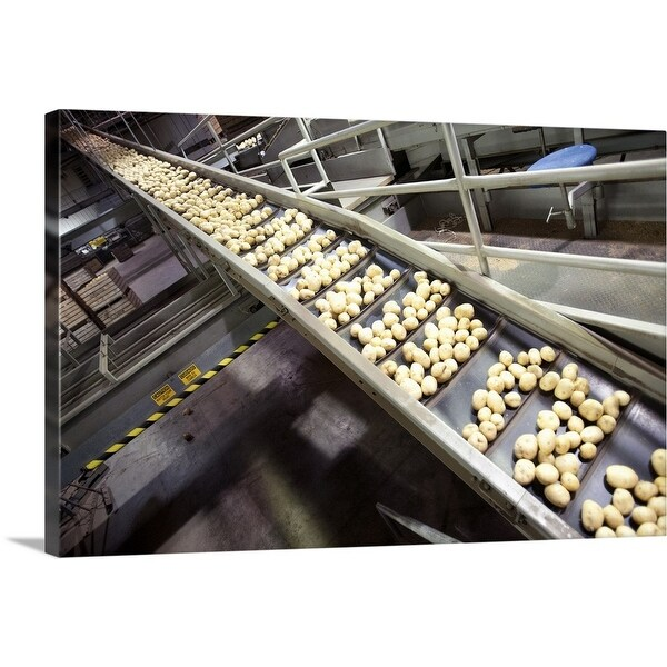 """Potatoes being processed on potato farm"" Canvas Wall Art"