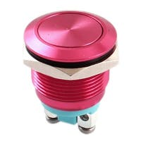 Unique Bargains 19mm SPST 2 Screw Terminals NO Momentary Metal Pushbutton Switch Red AC250V 5A