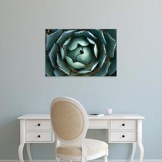Easy Art Prints Paul Colangelo's 'Agave' Premium Canvas Art