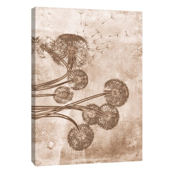 "PTM Images 9-105800 PTM Canvas Collection 10"" x 8"" - ""Sepia Flower Inversions 9"" Giclee Dandelions Art Print on Canvas"
