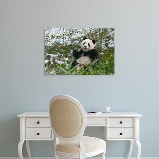 Easy Art Prints Keren Su's 'Panda Eating Bamboo On Snow' Premium Canvas Art