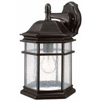 Dolan Designs 9235 1 Light Outdoor Wall Sconce from the Barlow Collection