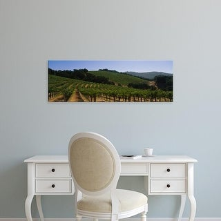 Easy Art Prints Panoramic Images's 'Vineyard on a landscape, Napa Valley, California, USA' Premium Canvas Art
