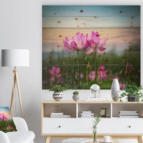 Designart 'Blooming Lotus Flowers at Sunset' Floral Photo Print on Natural Pine Wood - Pink