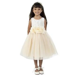 Kids Dream Little Girls Champagne Floral Lace Tulle Flower Girl Dress