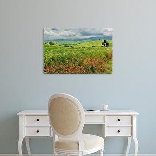 Easy Art Prints Adam Jones's 'Agricultural Field' Premium Canvas Art