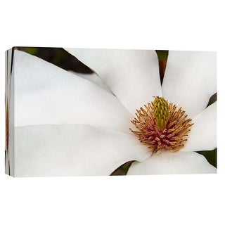 "PTM Images 9-103745  PTM Canvas Collection 8"" x 10"" - ""Magnolia Bloom"" Giclee Magnolias Art Print on Canvas"