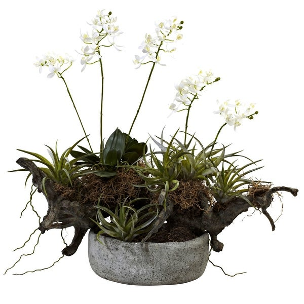 Nearly Natural Orchid & Succulent Garden with Driftwood & Decorative Vase