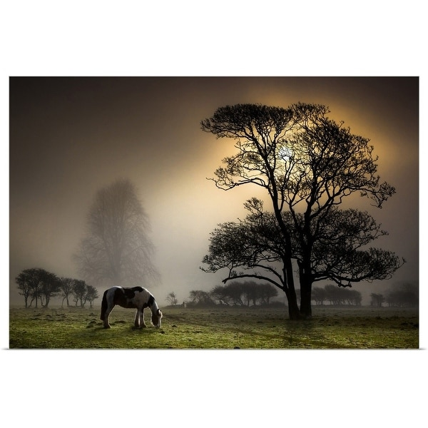 """""""Grazing horse in partially wooded field."""" Poster Print"""
