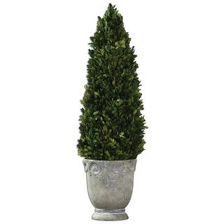 Uttermost 60111 Boxwood Cone Ceramic Topiary with Natural Foliage - light stone ceramic